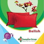 Champion pocket Spring Mattress 81*57*8 inc