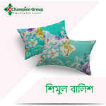 Champion Head Pillow শিমুল তুলা (Size:18x24)